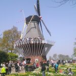 Windmill in Holland's Flower Festival